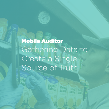 Mobile Auditor
